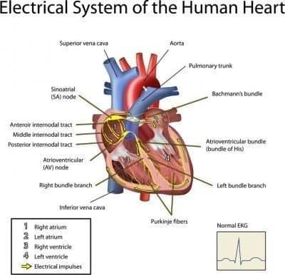 how to detect an irregular pulse