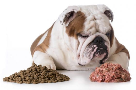 Natural Food For Diabetic Dog